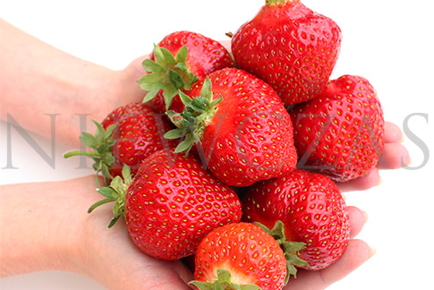 Strawberry fruits on hands