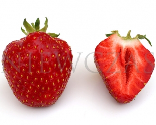 Cut strawberry fruit of Kent variety