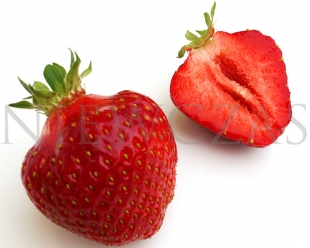 Cut strawberry fruit of the Honeoye variety