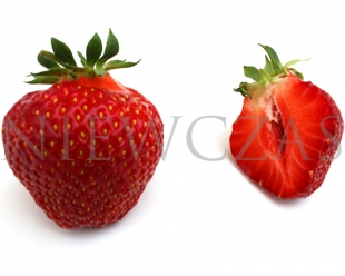 Cut strawberry fruit of Senga Sengana