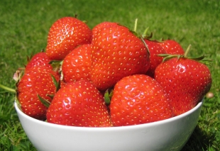 Strawberry Judibell fruits are tasty